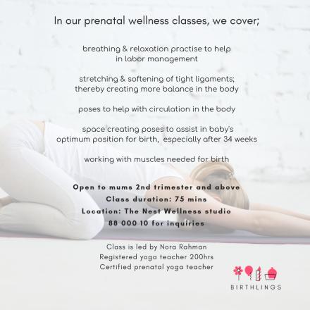 prenatal wellness(4)