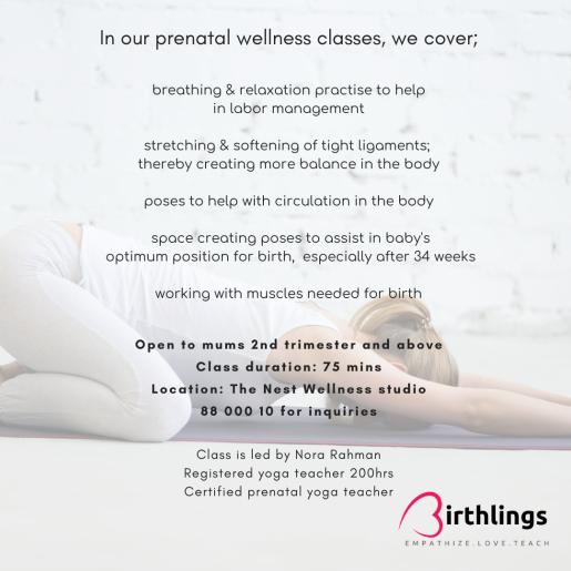 prenatal wellness